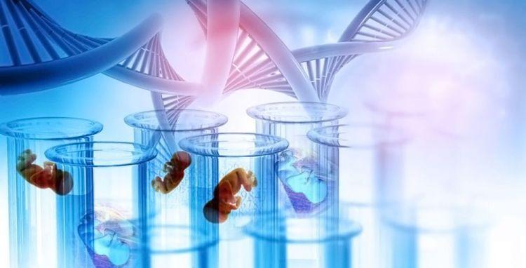 Foetus - Génome - 1